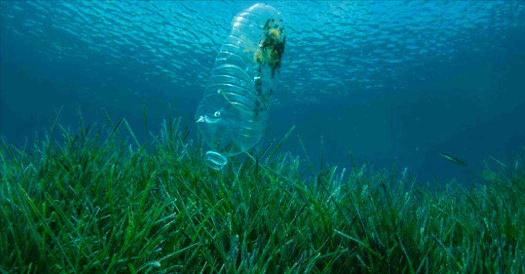 Ta ett bad för plastfria hav