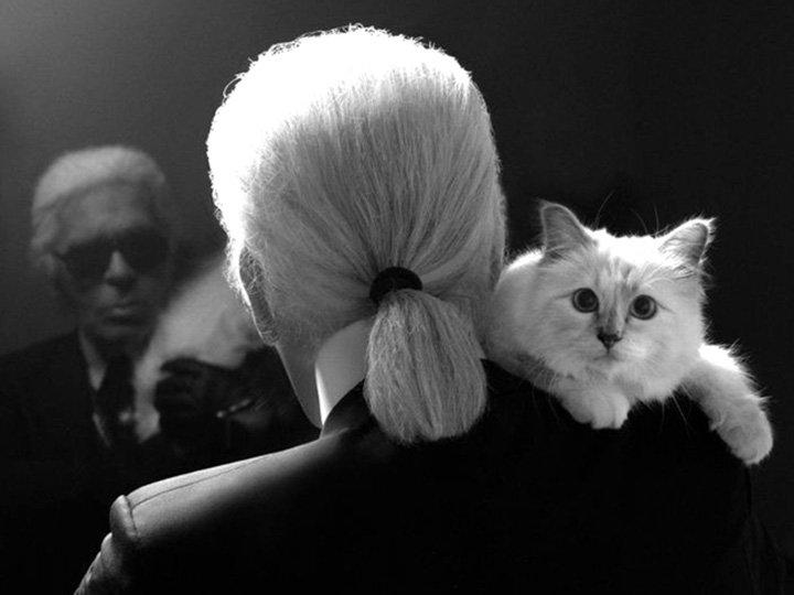 Karl Lagerfeld och katten Choupette