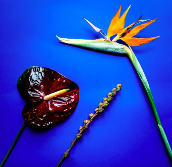 Kärleksfulla presenter - blommor fårn Flowery.se
